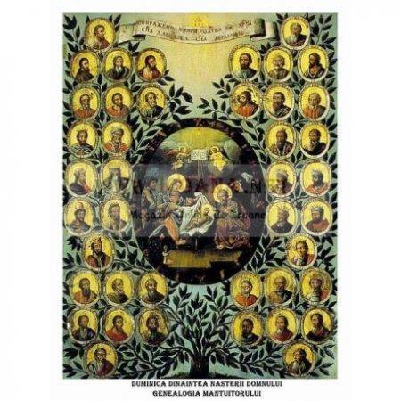 genealogia mantuitorului