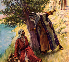 urmeaza pe hristos